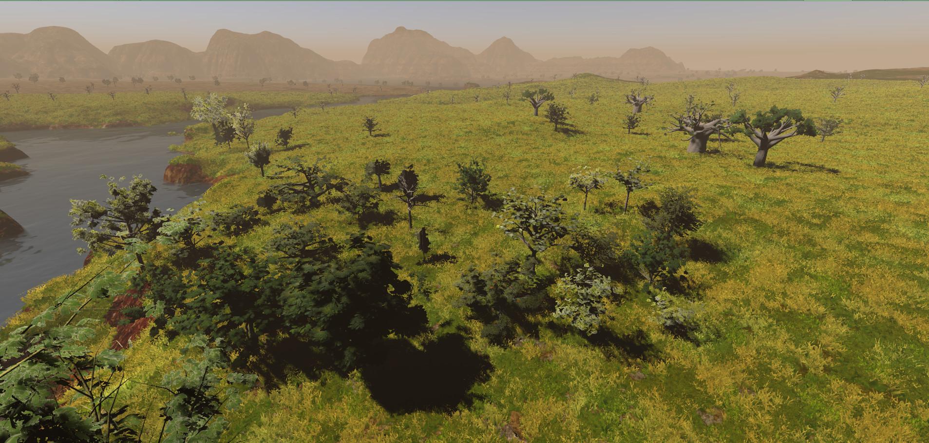 African Trees.jpg