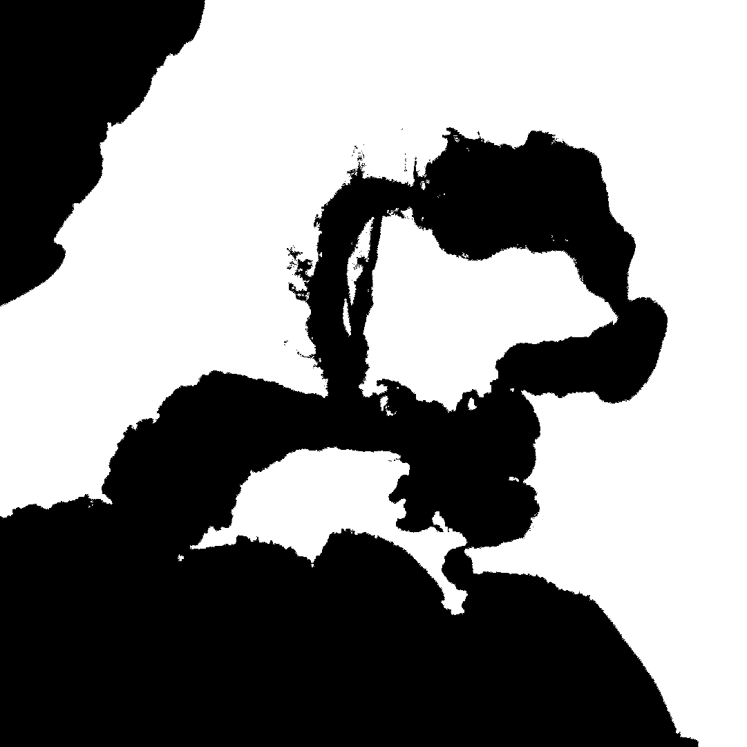 Australia Height Map (Merged).png