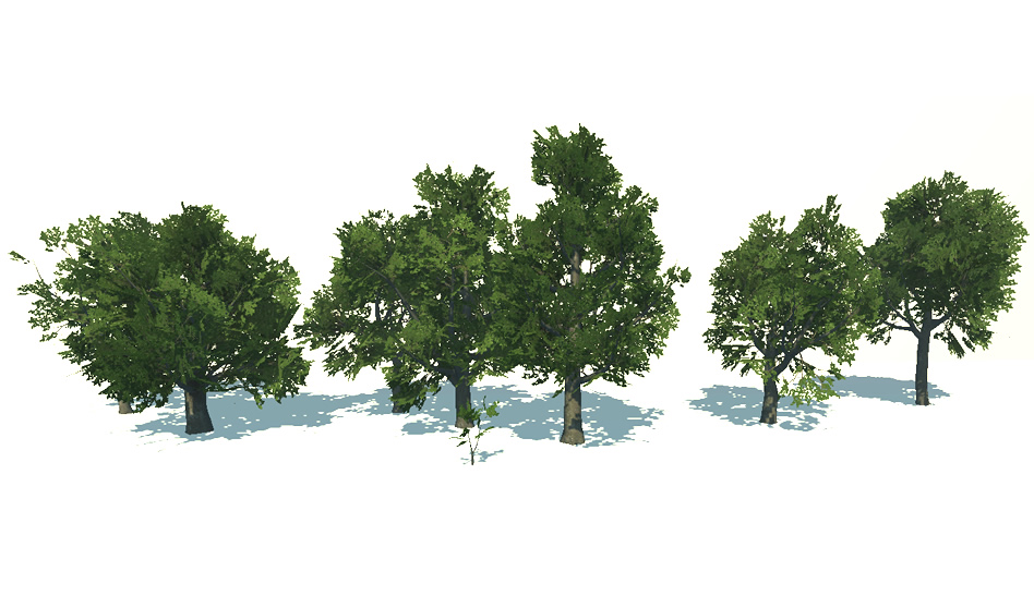 beech tree package [released on the asset store] - Unity Forum