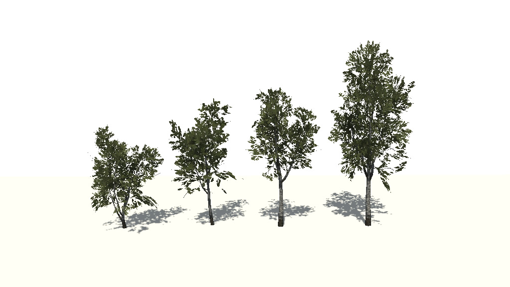 RELEASED] Birch trees package - Unity Forum