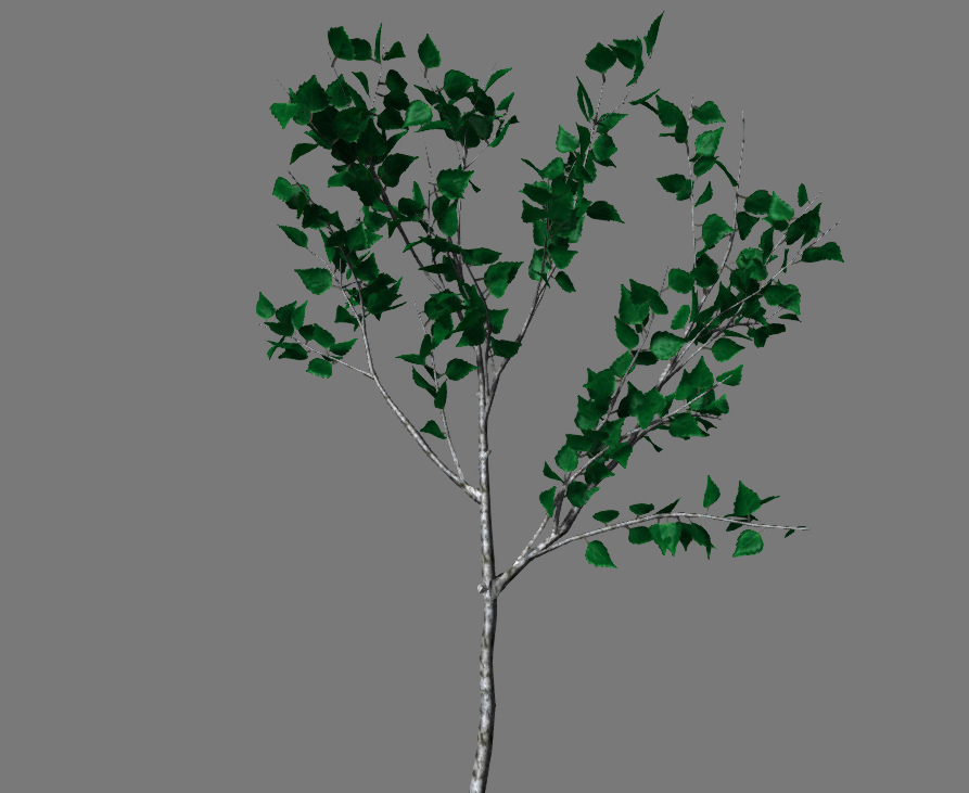 $branch.jpg
