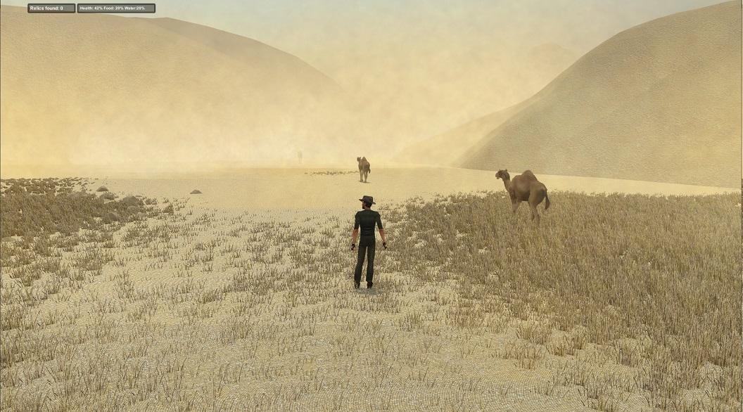 camelsinstorm.jpg