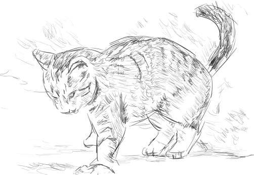 cat sketch 2.png