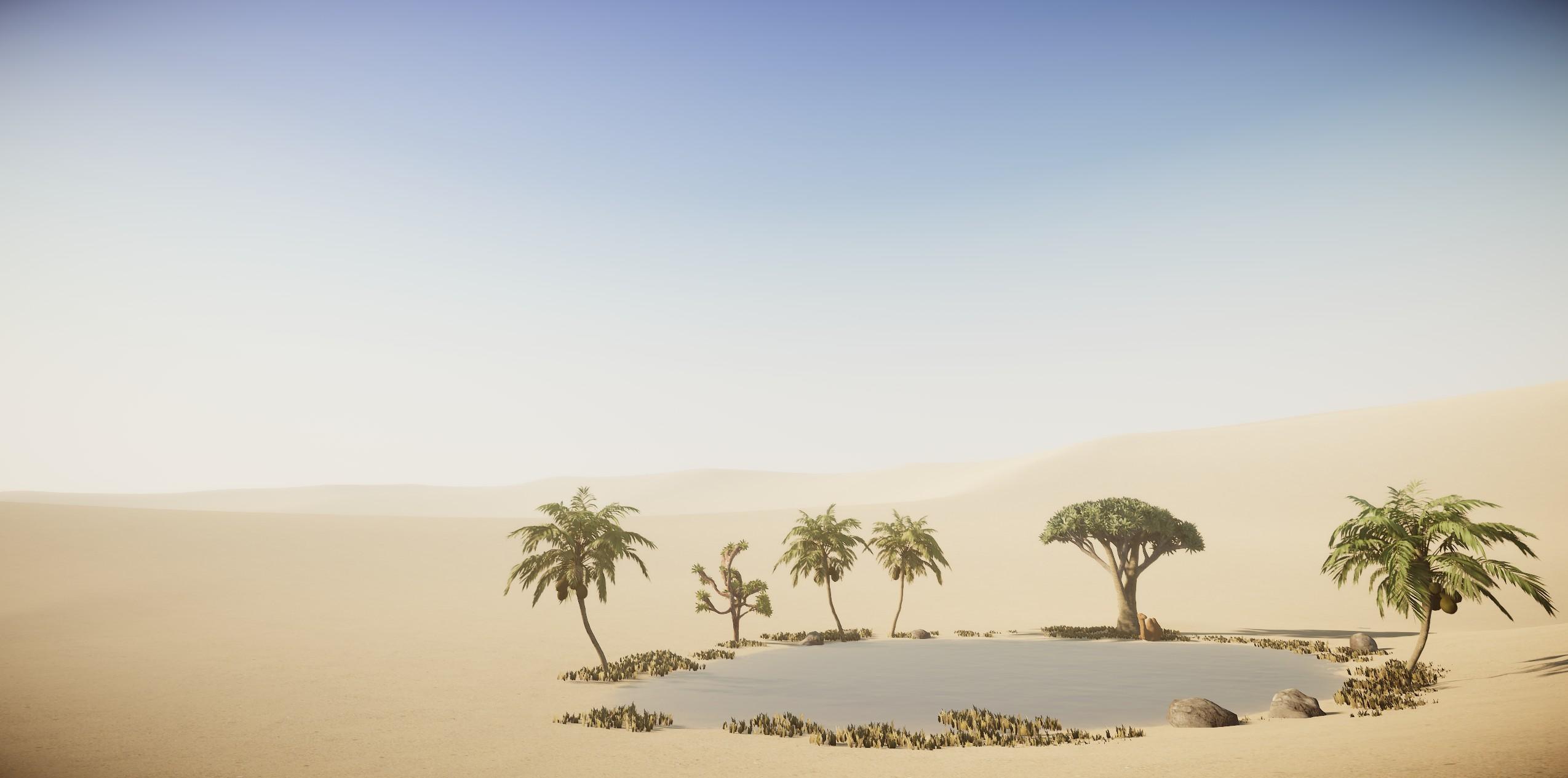 desert 02.jpg