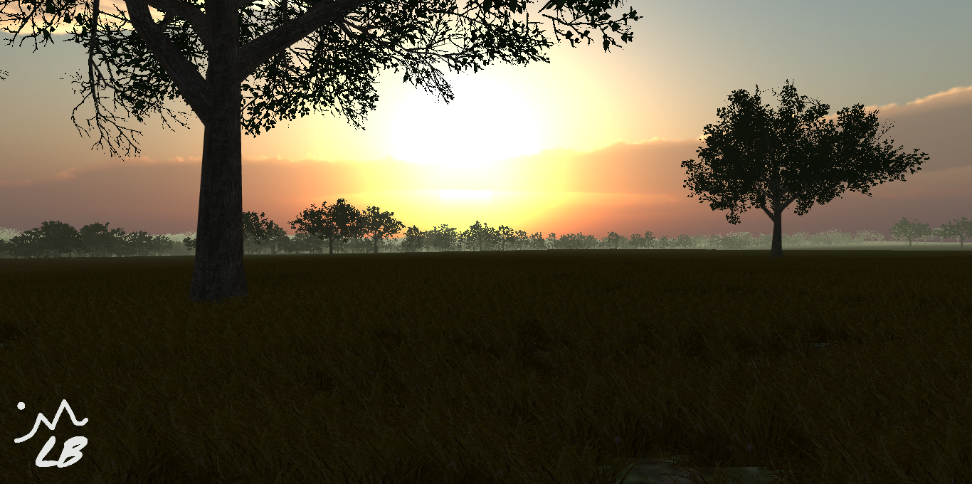 Forest Sunset.png