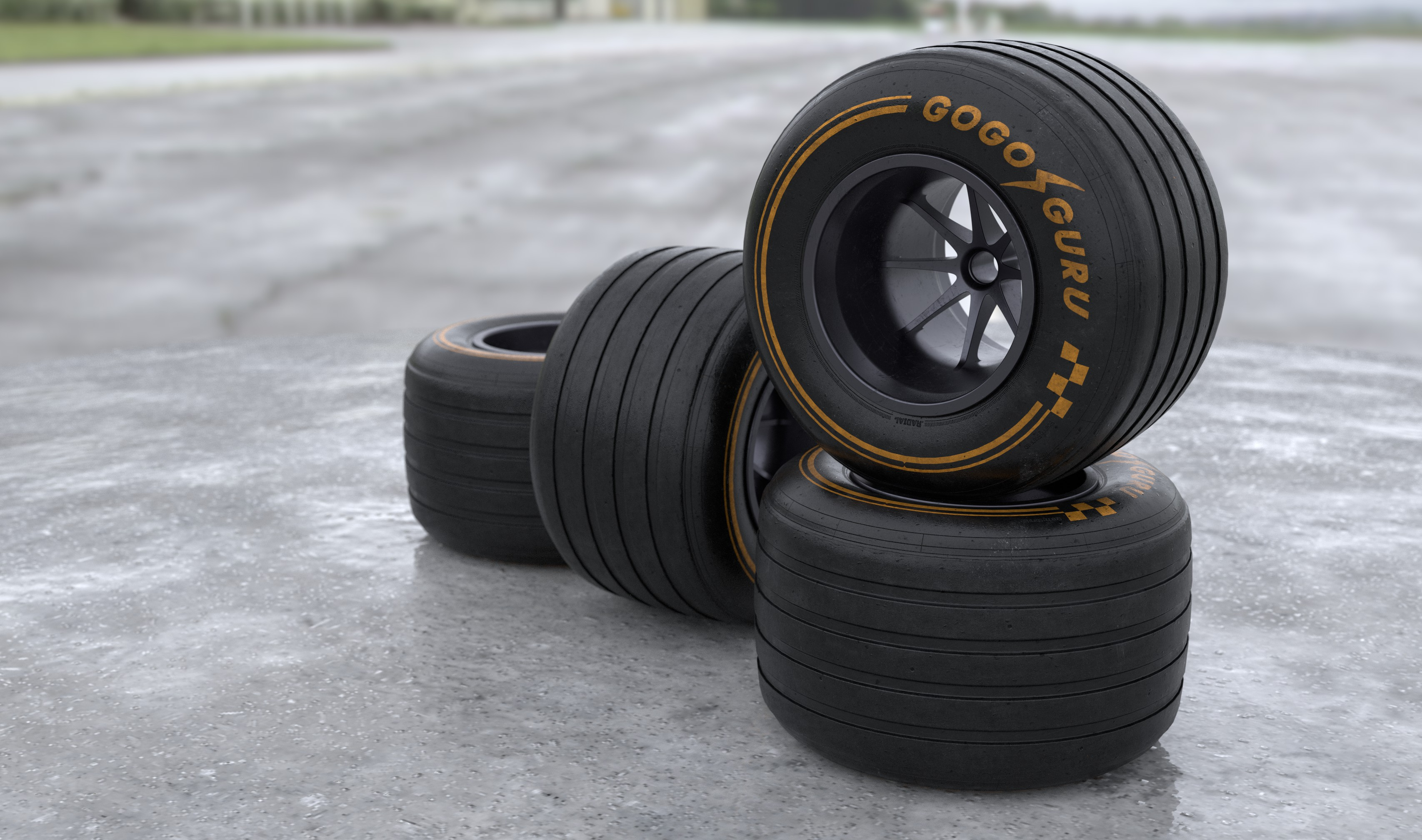 GOGO GURU R13 F1 rear 2019 11.jpg