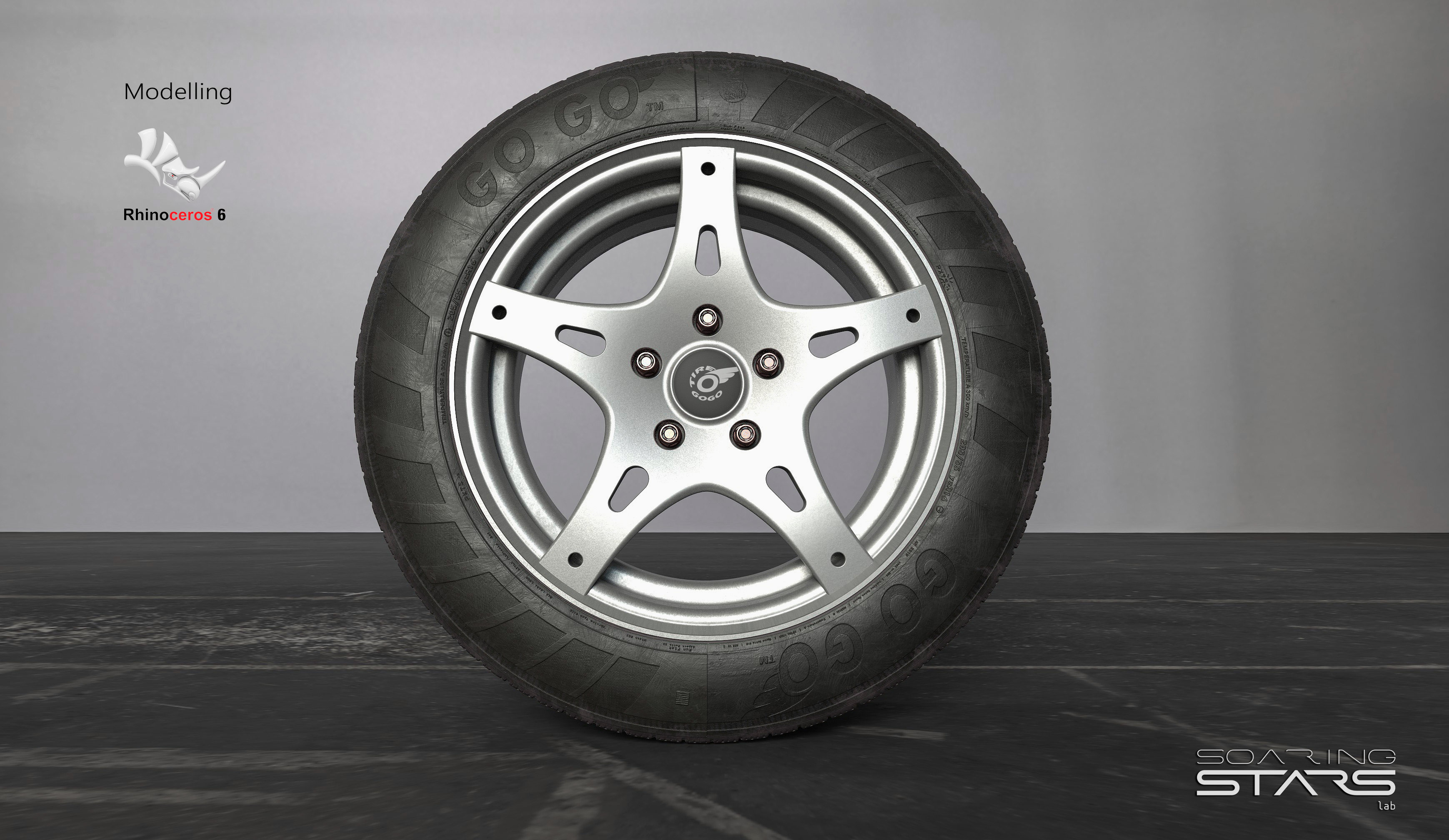 GOGO-Tire-205-55-R16-02.jpg