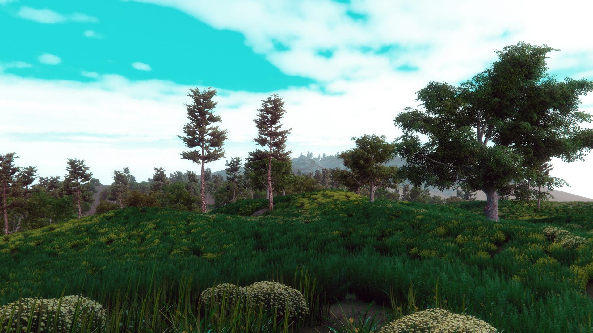 GrassyHill3.jpg