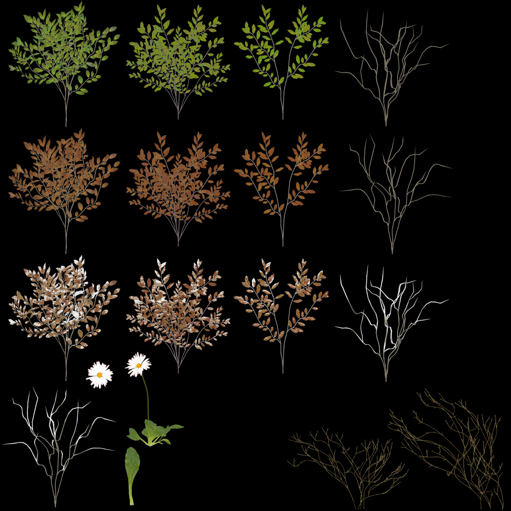 GroundPlantsRHE_Image.jpg
