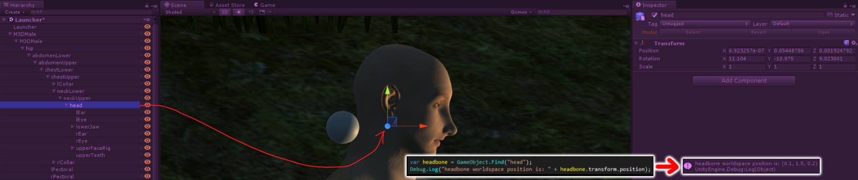 headbone1.png