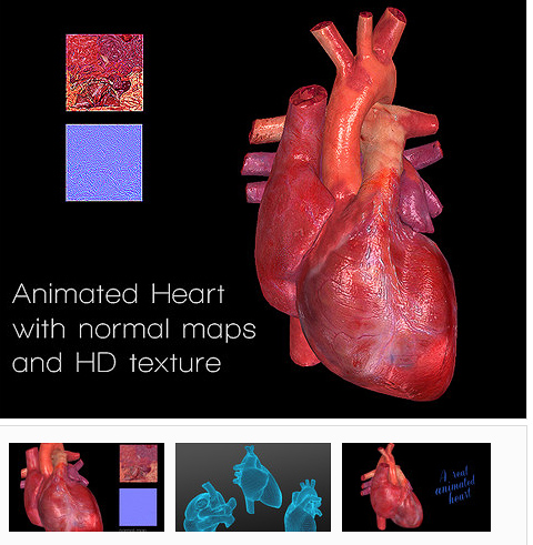human heart picture f.jpg