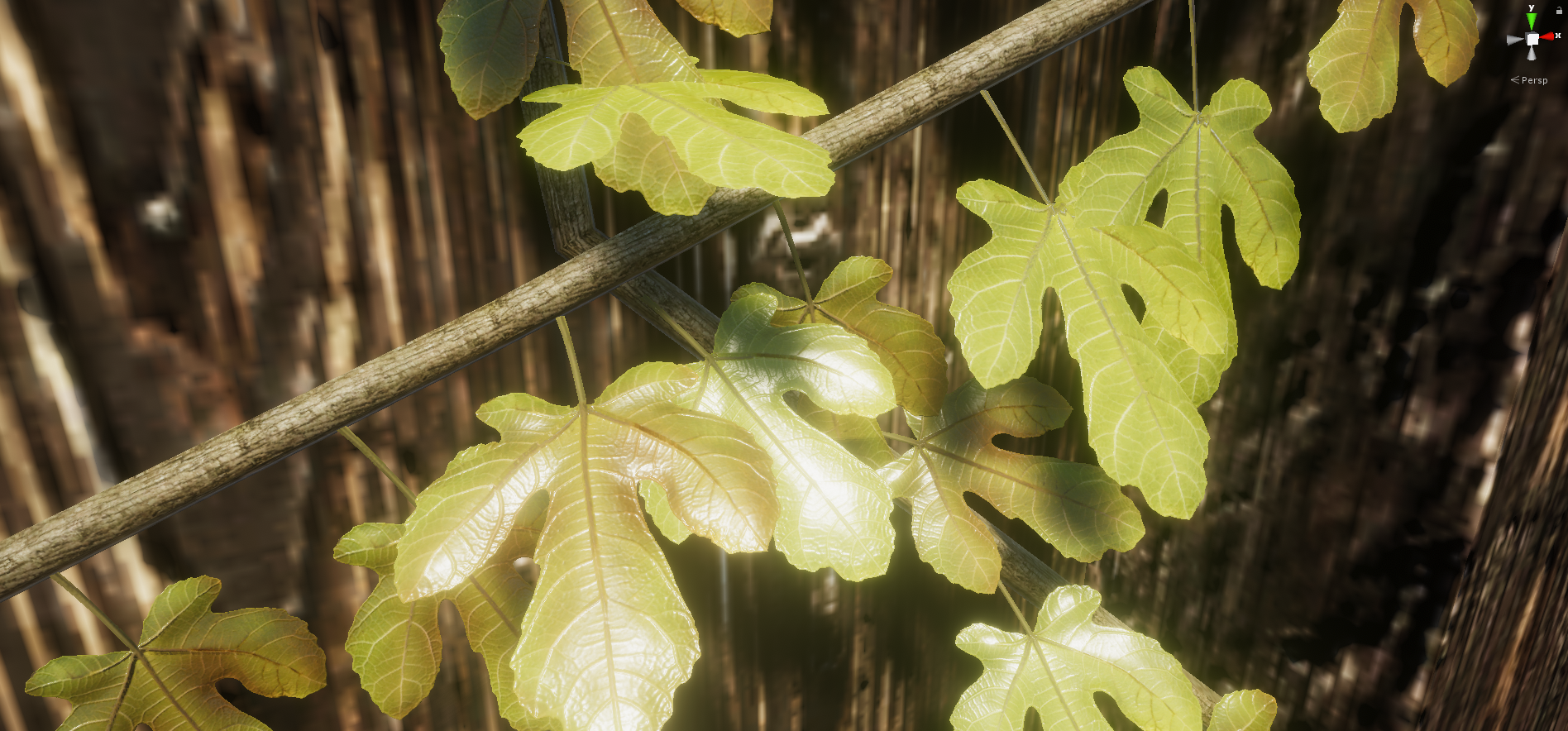 Ivy04.png