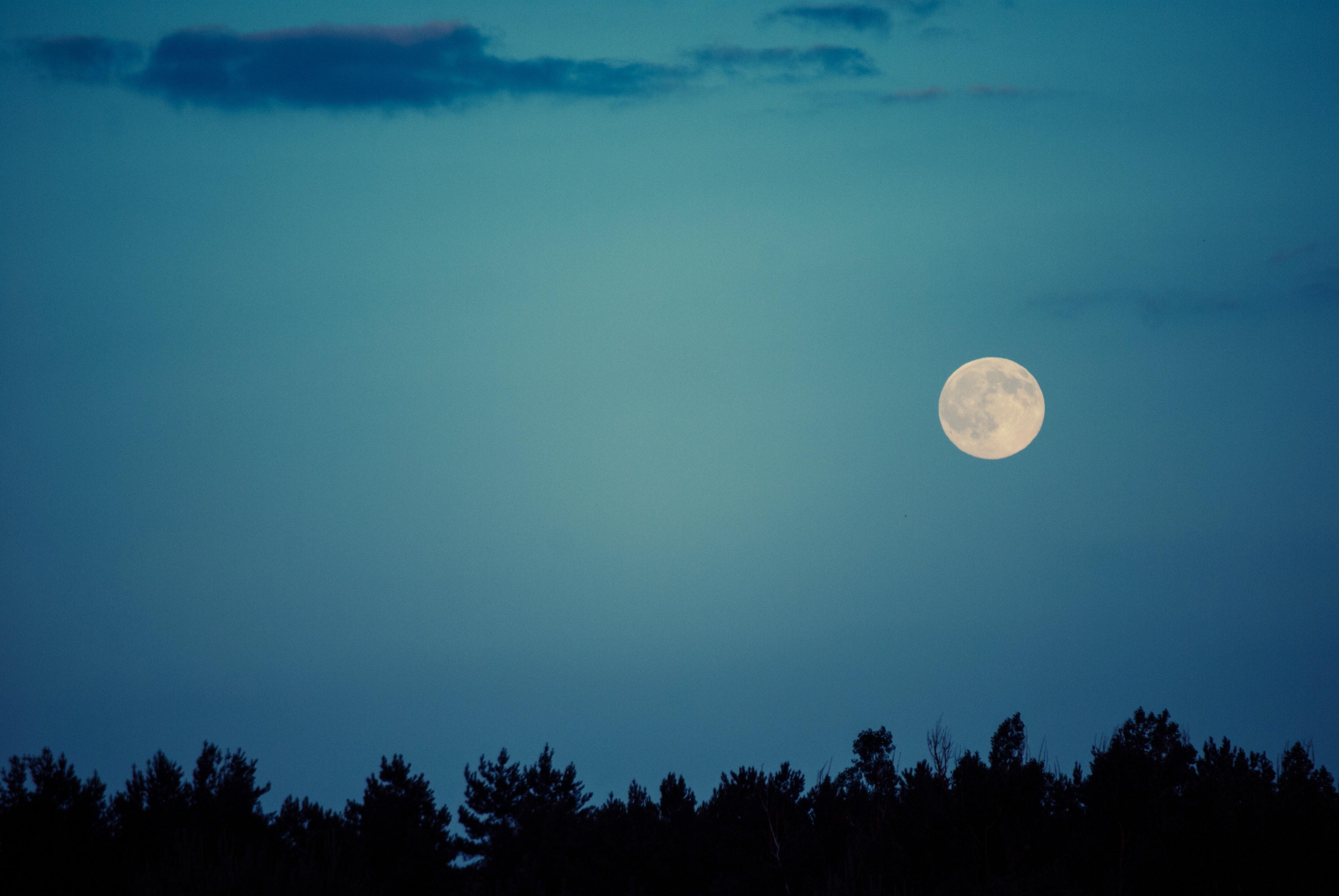 moon-night-8170.jpg