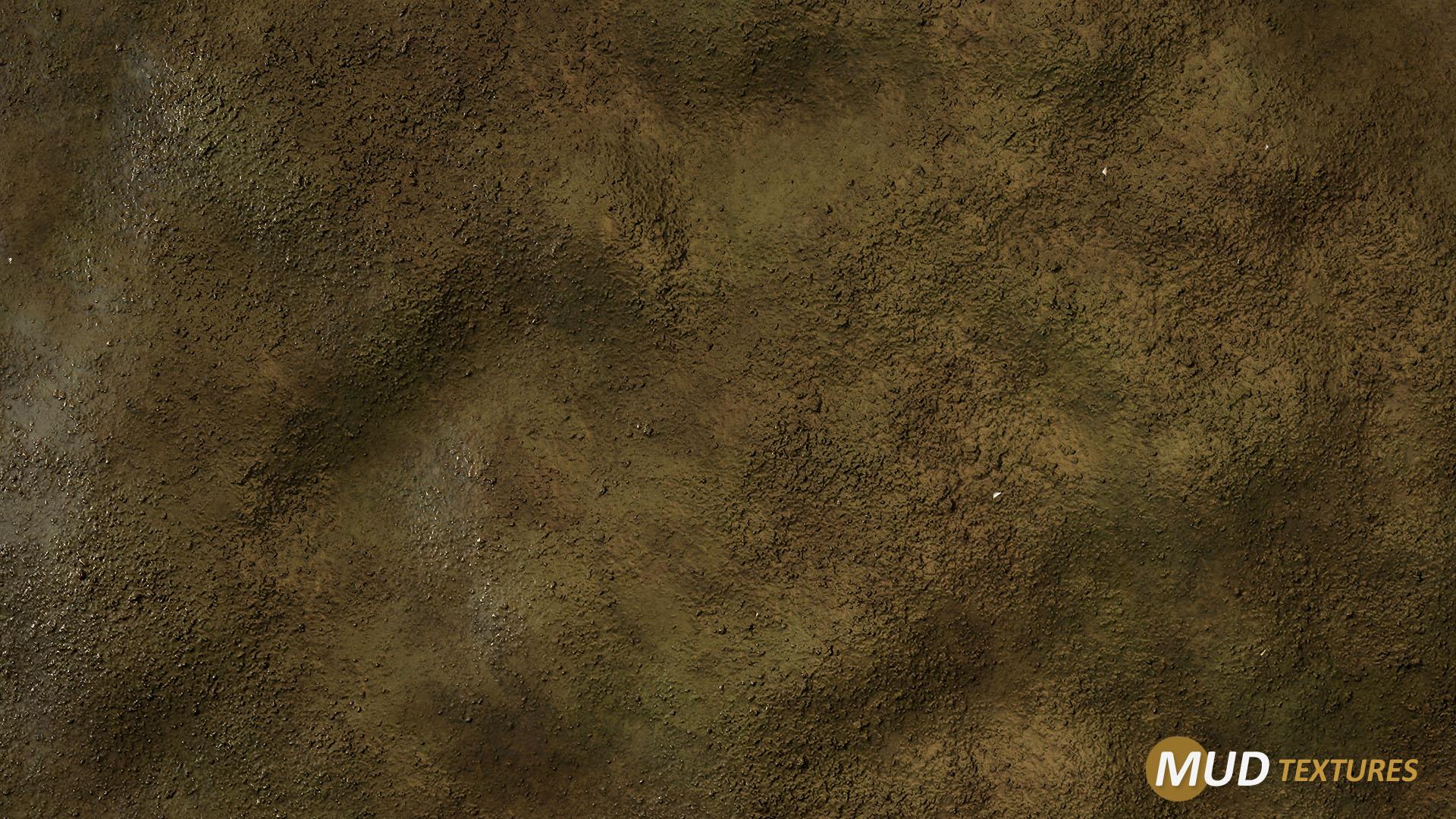 mud_texture_01.jpg