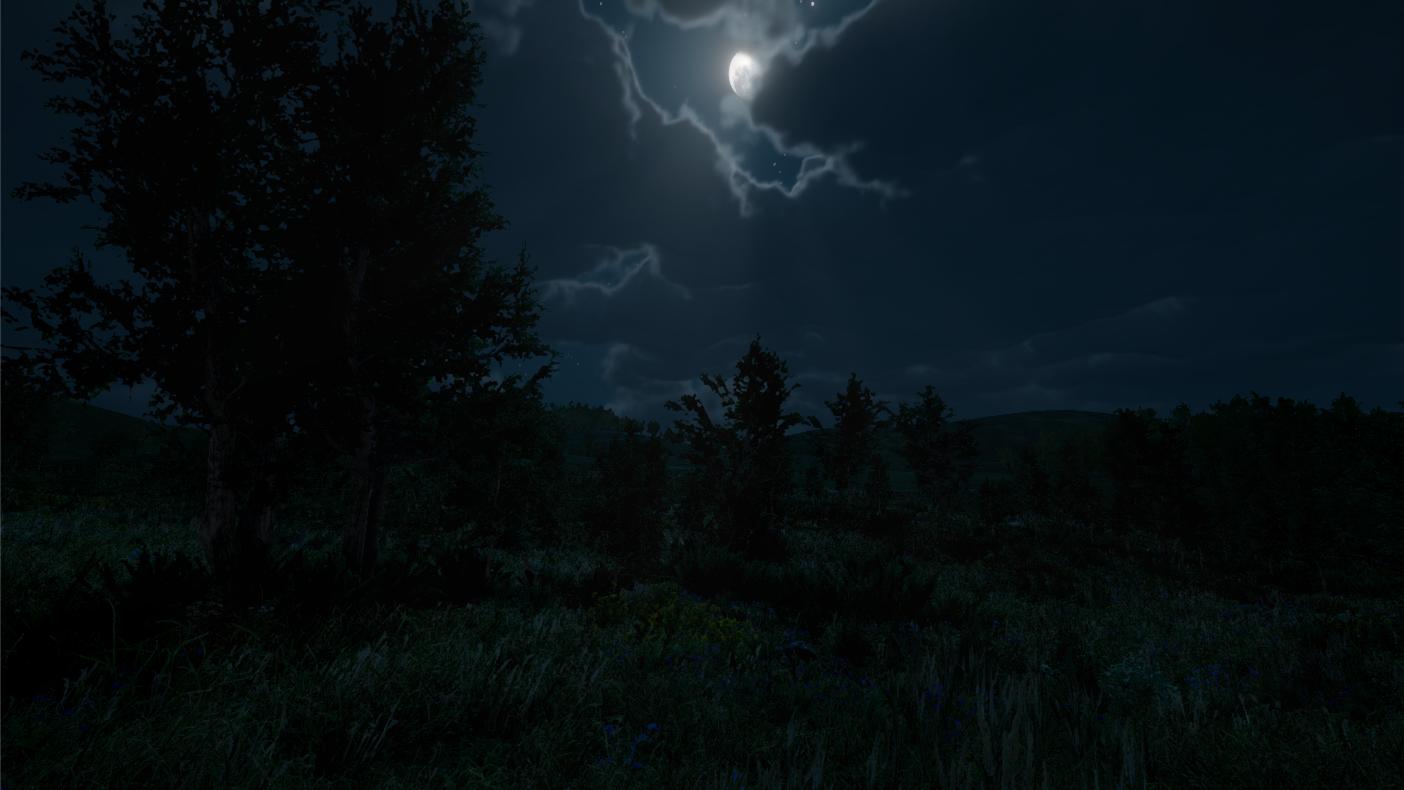 NightShadows.png