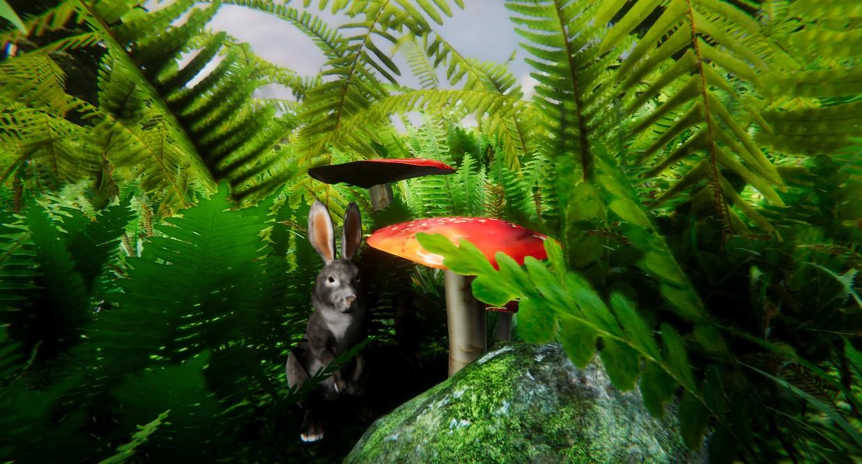 rabbit mushroom.jpg