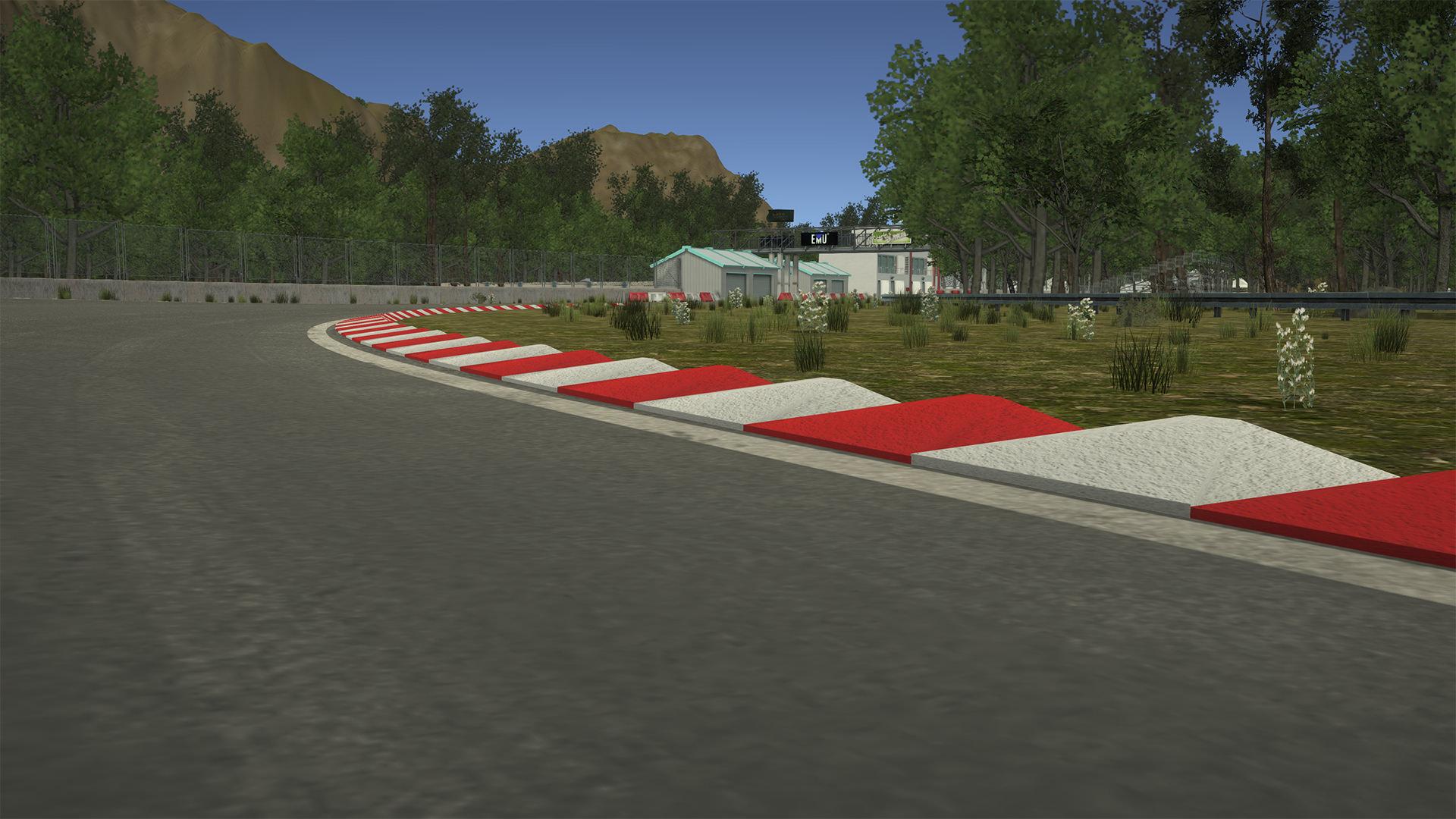 racingcurbs.jpg