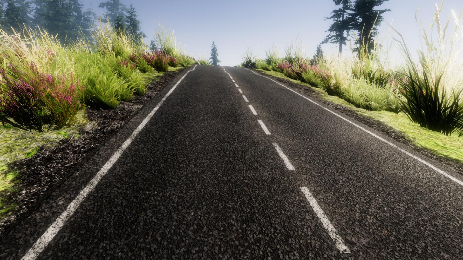 Road Example.jpg