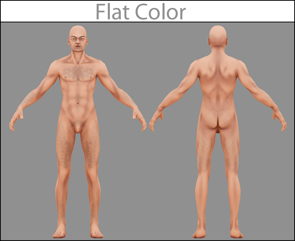 Human Body Base Male Nacked Unity Forum