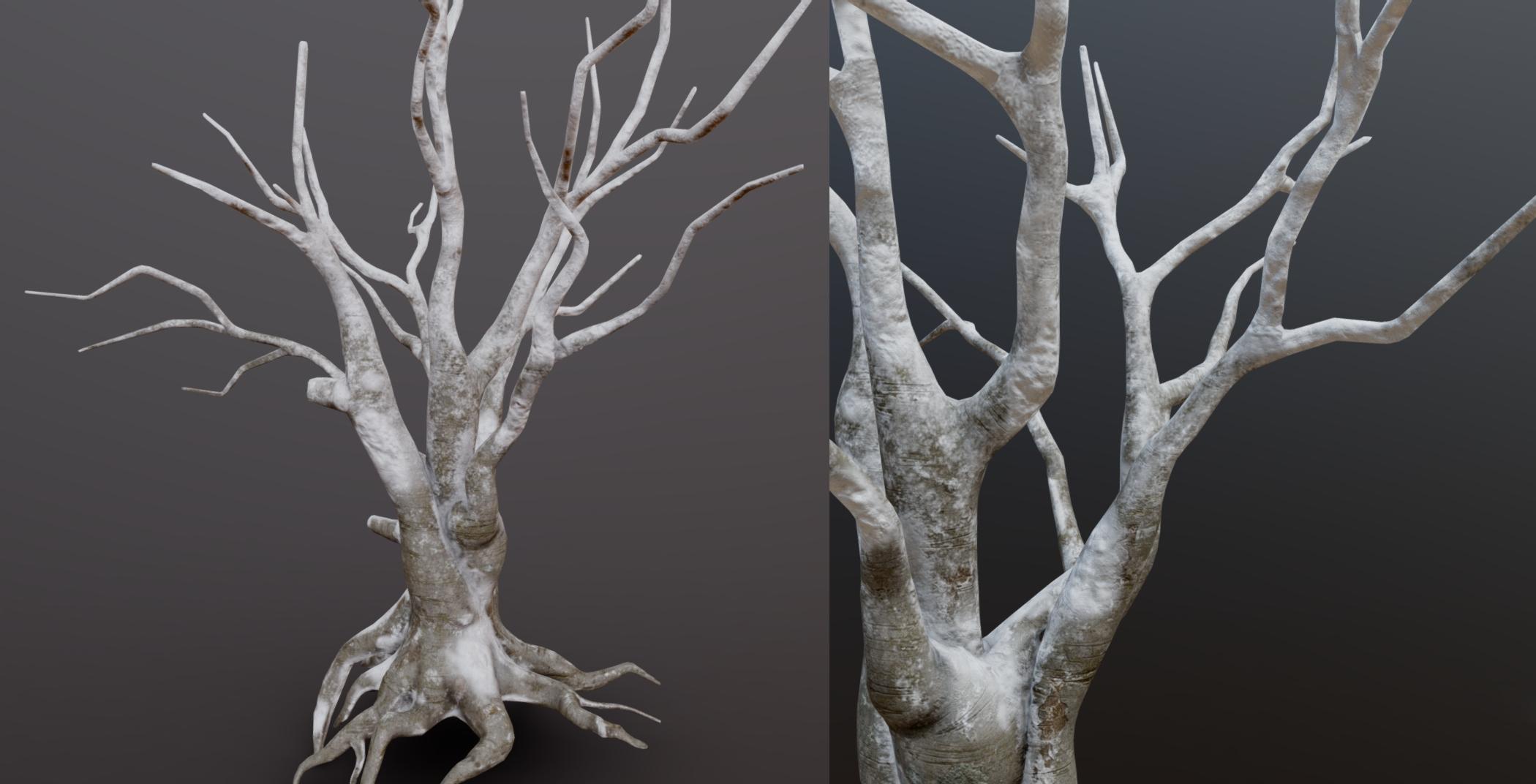 Snow Tree02.jpg