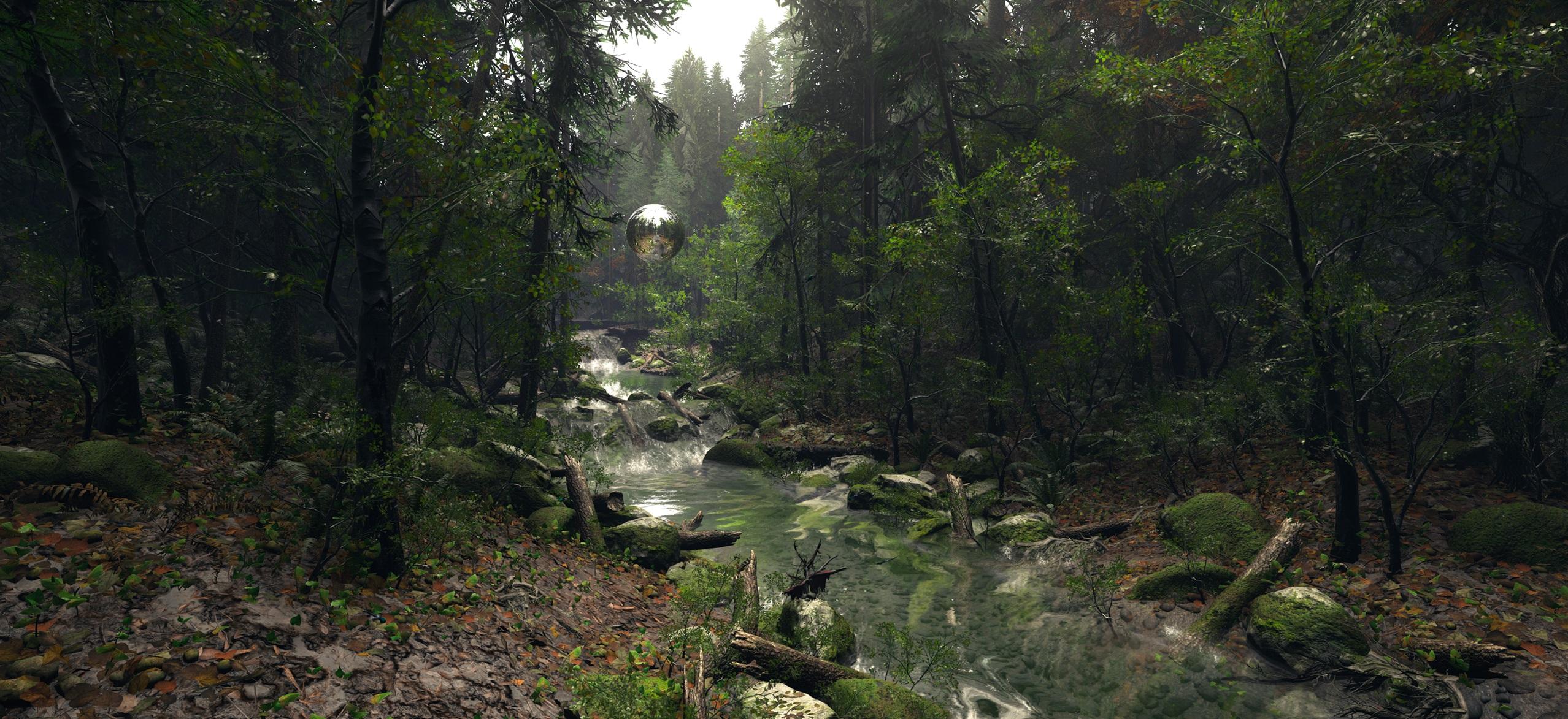 svoti_forest_2_1.jpg