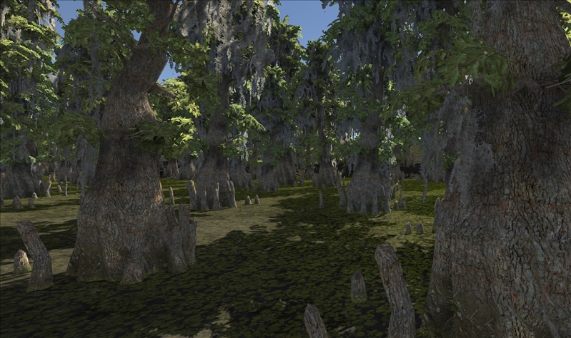 SwampFoam.jpg