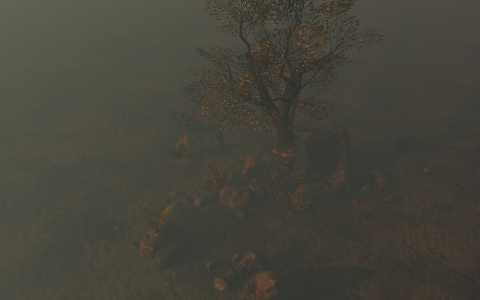 tree1_0039.jpg