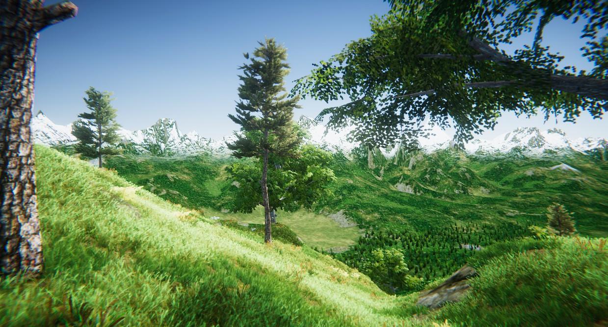 trees-fog-02.jpg